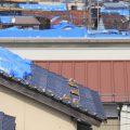 台風で雨漏り 事前の屋根点検・修理と火災保険の重要性 京都の屋根の専門家