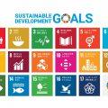 SDGsの取り組み 京都の屋根の専門家